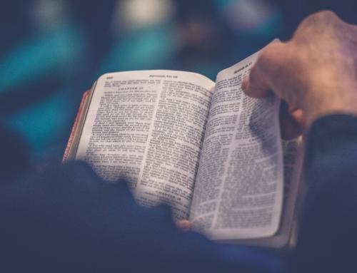 Sept livres cachés dans le Livre