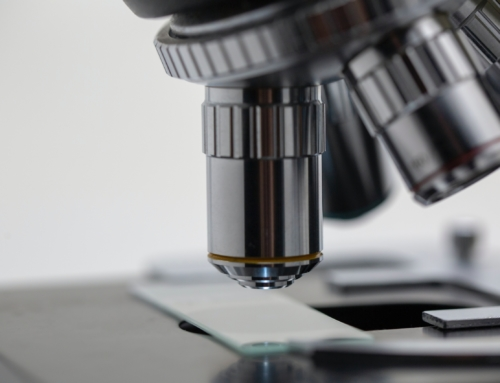 Bible et science : la recherche a du retard