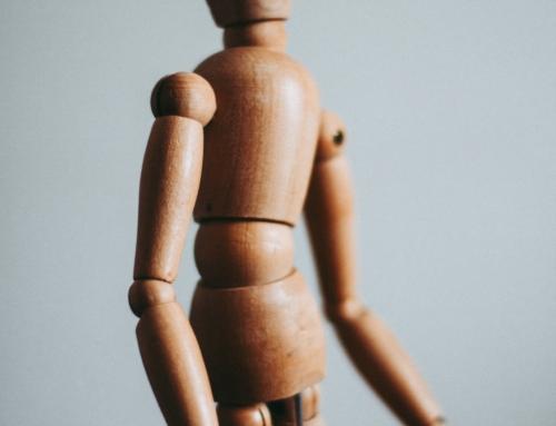 Le corps humain dans le plan divin