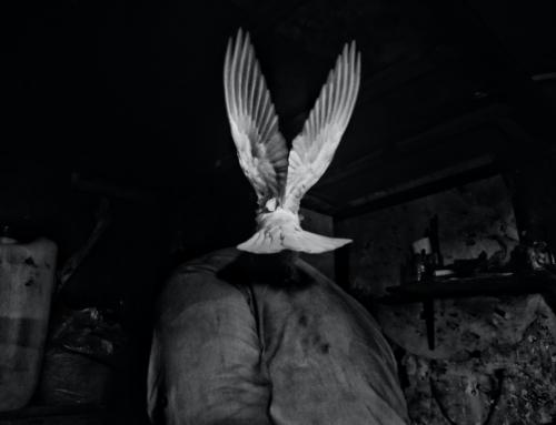 Le Saint Esprit, une puissance surnaturelle